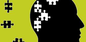 Ggz: organisatie, ziektebeelden en behandeling