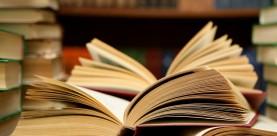 Serie online meetings Literair vertalen: Engels-Nederlands